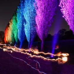 Rainbow Boulevard