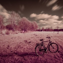 Oostzaan, NL - Infrared cycling