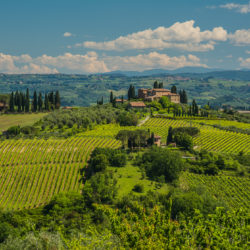 San Gimignano, IT - Dancing lines