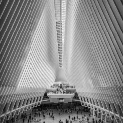 New York City, USA - The Oculus